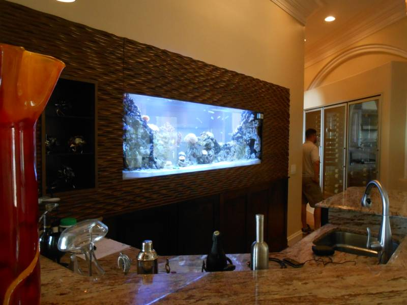 Stunning bar built into wall gallery simple design home for Fish tank built into wall