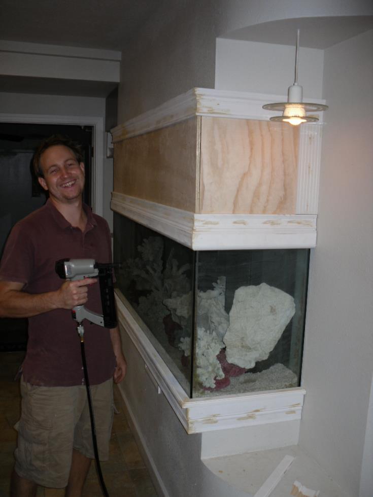 Custom aquariums and fish tanks installed in tampa florida for Fish tank wall