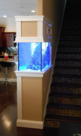 Custom Aquariums And Fish Tanks Installed In Tampa Florida