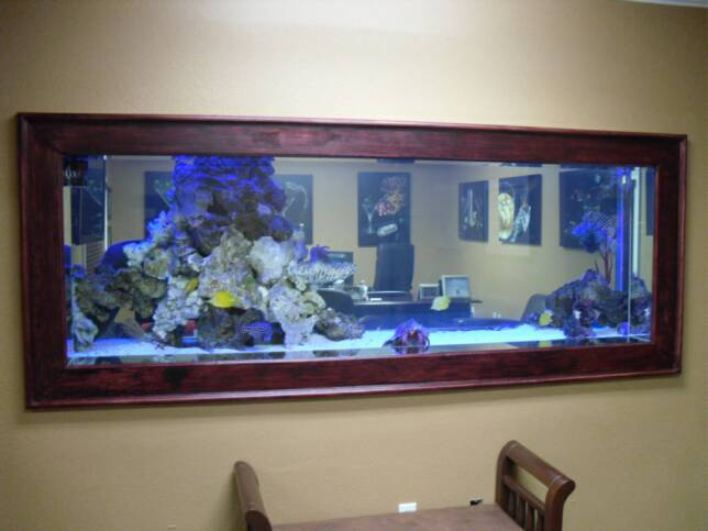 Image gallery wall aquarium for Fish tank built into wall